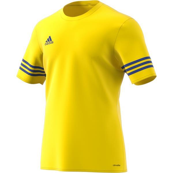F50489-koszulka-adidas-entrada-14-jersey-zolta-z-n